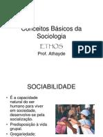 Conceitos Básicos da Sociologia_00