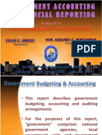 Government Accounting and Financial Reporting