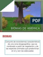 BIOMAS DE AMÉRICA