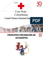 Principios Prevencion de Accidentes Vf