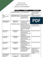 2012-08-01 COMENTARIOS PROYECTO COCHEA
