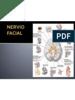 Inervacion facial