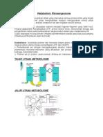 Metabolisme Mikroorganisme