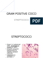 Chapter15 Streptococci