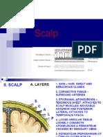 Scalp Applied