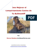 Cómo Mejorar el Comportamiento Canino de tu Bullmastiff