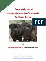 Cómo Mejorar el Comportamiento Canino de tu Cane Corso