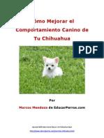 Cómo Mejorar el Comportamiento Canino de tu Chihuahua