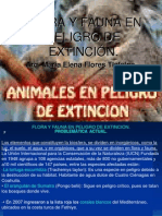 Flora y Fauna 1