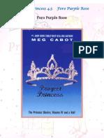 El Diario de La Princesa - 4.5 Proyecto Princesa