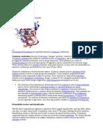 Xenobiotic Metabolism