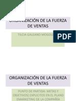 ORGANIZACIÓN DE LAS FUERZAS DE VENTAS