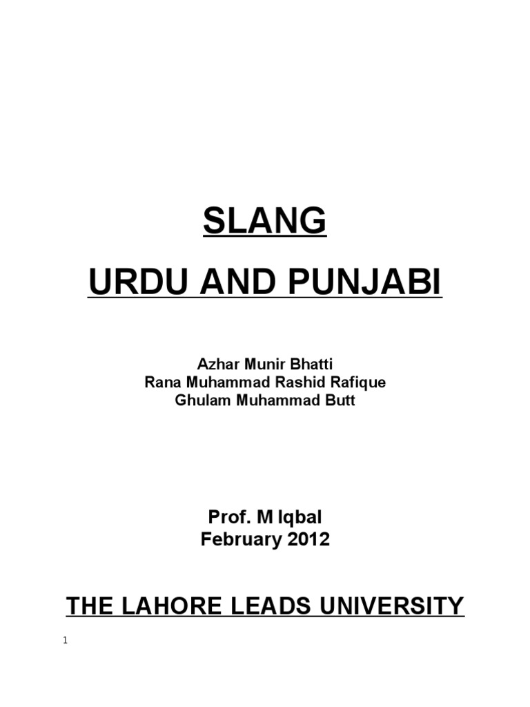 Leads to meaning in punjabi