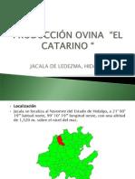Rancho El Catarino
