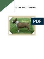 El Libro Del Bull Terrier2