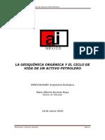 La Geoquimica Organica y El Ciclo de Vida de Un Activo Petrolero