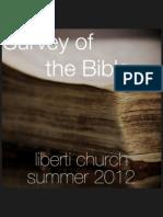 Bible Survey 5