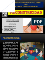 PSICOMOTRICIDAD - ppt