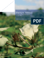 Report Blantyre Malawi Investor Opportunities