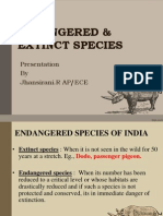 Endangered & Extinct Species