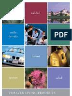 PRESENTACION DE OPORTUNIDAD ESPAÑOL