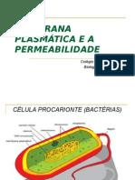 Cópia de MEMBRANA PLASMÁTICA- 11-08 e 18-08