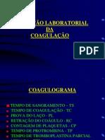 Sistema de Coagulação
