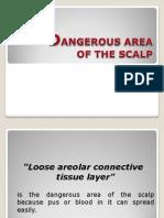 1.2 Dangerous Area of the Scalp