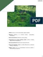05- Algas Verdes I