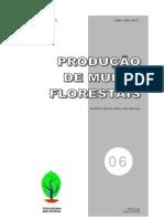 Producao de Mudas Florestais