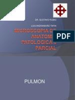 Microscopia de Anatomia Patologica II Parcial