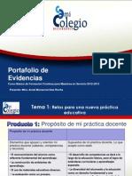 Portafolio de Evidencias_2012-2013