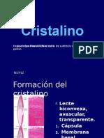 Cristal i No 20091006