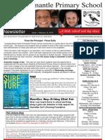NFPS Newsletter Issue 1, February 15, 2013
