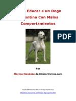 Como Educar a Un Dogo Argentino Con Malos Comportamientos