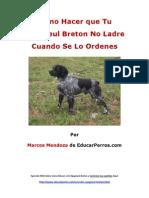 Cýýmo Hacer que Tu Epagneul Breton No Ladre Cuando De Lo Ordenes