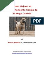 Cýýmo Mejorar el Comportamiento Canino de tu Dogo Canario