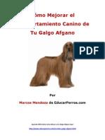 Cýýmo Mejorar el Comportamiento Canino de tu Galgo Afgano