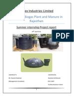 Sintex Project Report