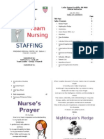 Team Nursing Staffing