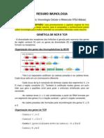 3 - RESUMO GENÉTICA DE BCR E TCR