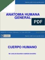 1. Cuerpo Humano