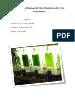 Fotobioreactor Casero Para Producir Algas Para Combustible