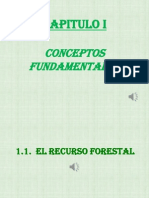 Capitulo i. Conceptos Fundamentales