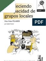 Estudio Fortaleciendo La Capacidad de Grupos Locales