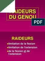 RAIDEURS DU GENOU