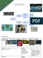 Libreta de Apuntes de microbiología