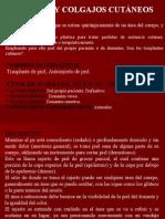 injertosycolgajos-090327011802-phpapp02