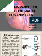 Exposicion de Sist. Hidrco Hemal (2)