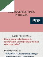 Embryogenesis Basic Processes